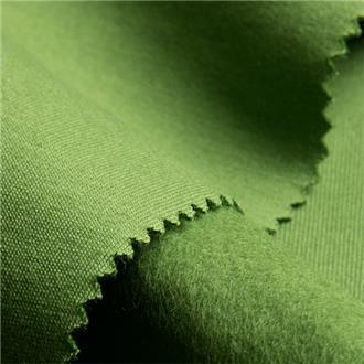 Bio-Feinsweat grün