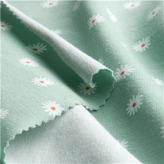 Gänseblümchen mint