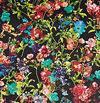 Nachtblüten