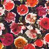 Eleen mit Rosen
